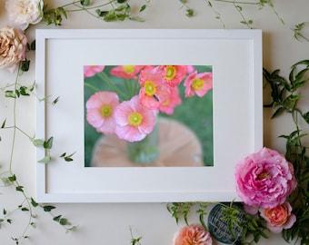 Flower Botanical Print Photograph Poppy 8 x 10 Floral