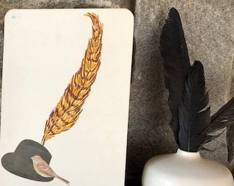 A feather in his cap. Original collage by Vivienne Strauss.