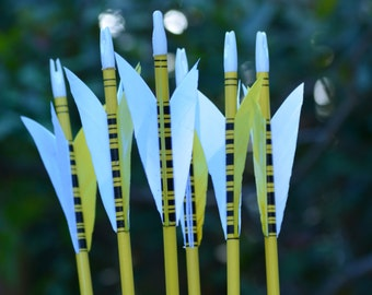 Archery Arrows, youth arrows, Poplar shafts set of 6 yellow and black for kids