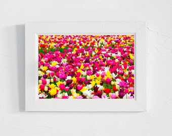 oil tulips PRINT, digital download