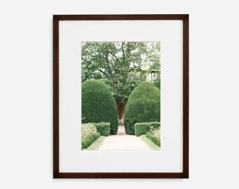 Formal Garden, Fine Art Photograph, Home Decor