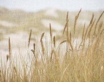 Peaceful landscape photography - At the Sea - Oregon sand dunes, dune grass, sepia archival lustre print, wall art, interior art, dorm decor