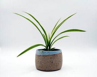 Speckled Ceramic Planter, Cacti Pot, Succulent Pot, Gift for Her, Stoneware Vessel, Ceramic Flower Pot