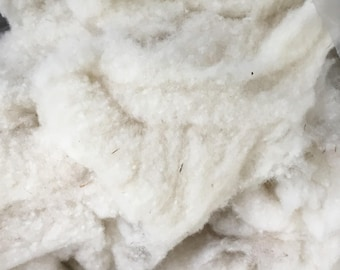Cormo Wool Neps - Over a POUND! On Sale