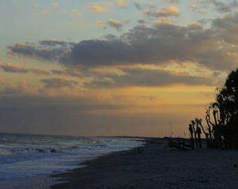 Photography print, landscape print, sky print, nature print, Botany Bay Beach Glow, Edisto SC - 55001078