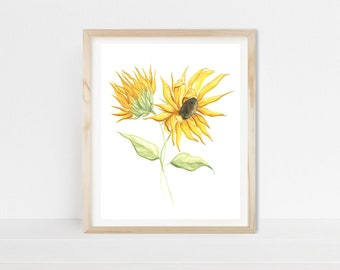 Sunflower, sunflowers, yellow, flower art, flower prints, yellow flowers, flowers, watercolor, watercolor painting, watercolor print