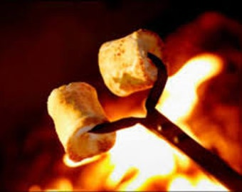 Toasted Marshmallow Premium Fragrance Oil  Used To Make Personal Fragrance - Candles- Soap- Bath Products -Cleaning Products-Diffuse