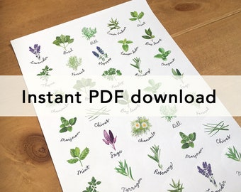 Pdf file of herbs sticker sheet, for home printing. For circular stickers on A4 and US letter.