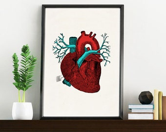 Art print Blue and red Human Heart -Science prints A4 wall art- Anatomy prints wall Doctors Gift, Love gift  SKA057WA4