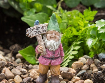 "Buddy the Gnome (2.50"") with Metal Pick for the Fairy Garden"