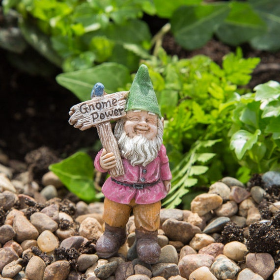 """Buddy the Gnome (2.50"""") with Metal Pick for the Fairy Garden"""