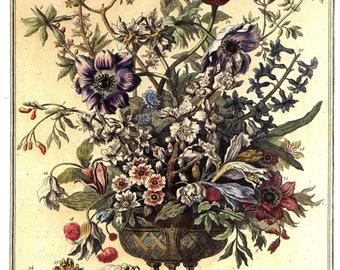 February Flowers Art Print -12 MONTHS of FLOWERS- Winterthur Museum - 18th Century Botanical Illustration - Wedding Baby Gift Idea - 14 x 19
