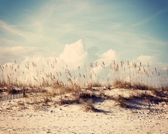 beach photography, blue home decor, nature wall art, sand dunes, beach cottage art, landscape photography, At the Beach