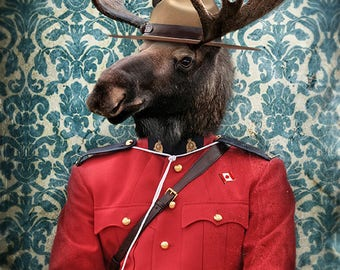 Moose Decor Canada Canadian Art Print Canadian Animals wearing Clothes Moose Head Print Animal Photography - Morris B. Moose