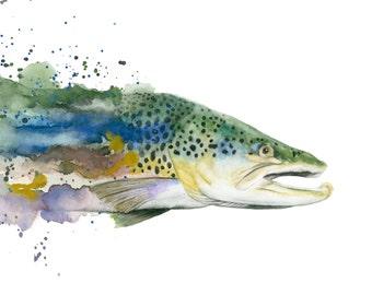 Brown Trout Watercolor Print