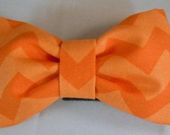 Dog Flower, Dog Bow Tie, Cat Flower, Cat Bow Tie  - Orange Chevron