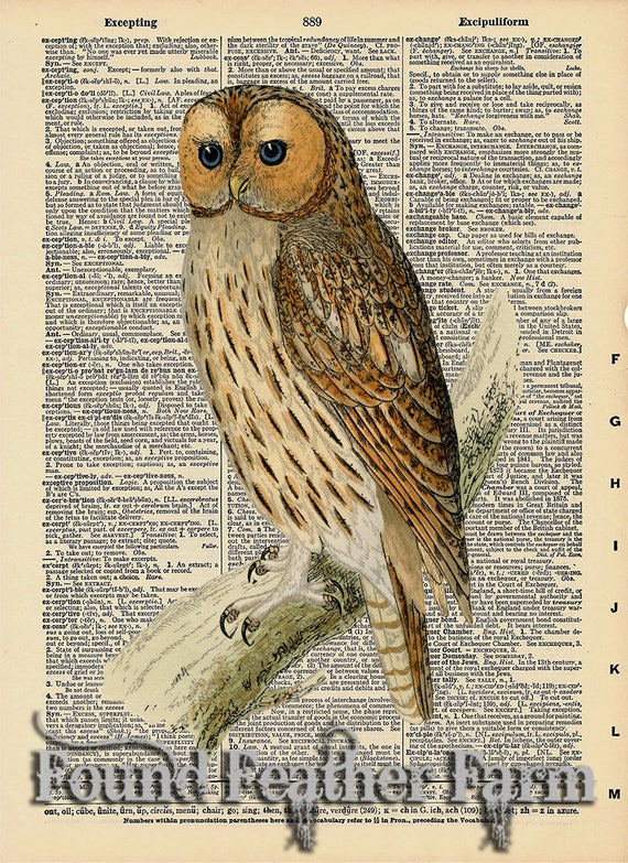 """Vintage Antique Dictionary Page with Antique Print """"Owl on a Branch Three"""""""