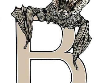 Bat - Alphabet Print - Unique Gift - Letter B - Name Gift
