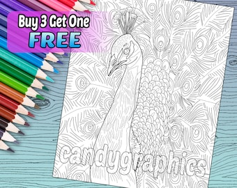 Peacock - Adult Coloring Book Page - Printable Instant Download
