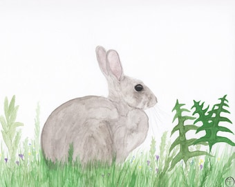 Rabbit watercolor, rabbit painting, rabbit print, rabbit art, rabbit & ferns