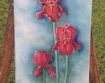 Three Red Irises in Purple
