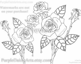 Adult Coloring Page Printable Página para colorear Rosen Digital Color Sheet Roses Rose Buds Bud Flowers Line Drawing Art - INSTANT DOWNLOAD