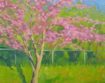 Redbud Display, original oil painting
