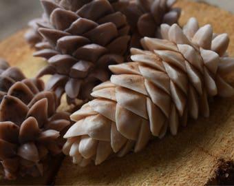 Pine Cone Soap (2 Medium)