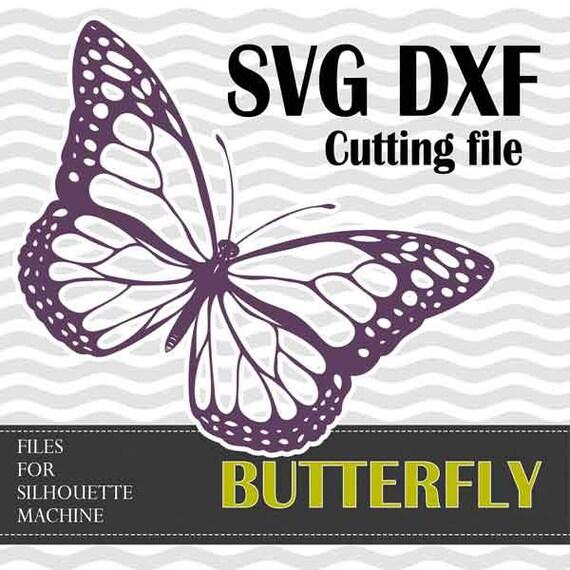 Schmetterling SVG DXF Schnittdateien Silhouette Studio