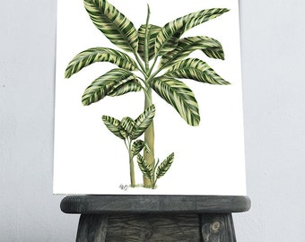 Palm Tree Banana Tree 2 Tropical Print tropical decor botanical print tropical leaf tropical art tropical home decor tropical island decor