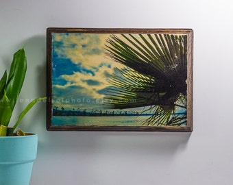 California, Palm tree, prints on wood, ready to hang, art on wood, holiday gift, Home decor, Christmas gift, San Diego, gifts for her