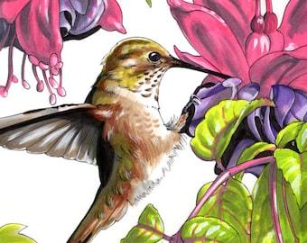 Hummingbird Painting // Acrylic Print // Acrylic Painting // boyfriend gift // coworker gift // christmas gift