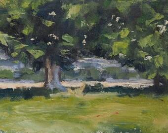 View Through The Foliage - landscape, oil, painting, fine Art
