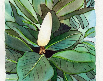 Original watercolour painting : White Magnolia Flower Bud