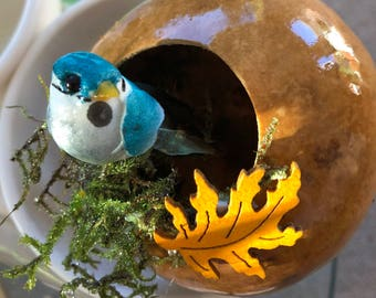 Light Turquoise Bird nest. OOAK. Hand-made Gourd  ornament/decoration by Artist Sandy Short