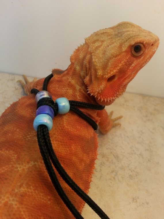 REPTILE HARNESS ADJUSTABLE one-size-fits-all Blue