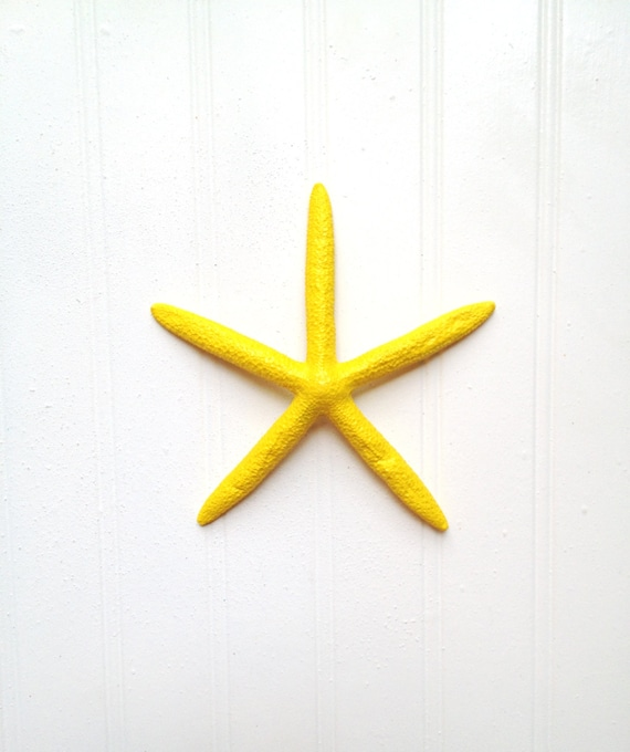 Starfish in yellow wall decor beach nautical island tropical