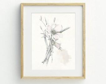 Flower Art Print, A4, Bohemian Decor, Flower Wall Art, Flower Illustration, Dogwood, Archival Print, Botanical Art, Illustration, Hand Drawn