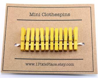 Mini Clothespins - Set of 12 - Bright