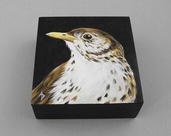 Brown Thrasher painting - speckled thrush art - speckled songbird - woodland bird decor - polka dot - Georgia state bird