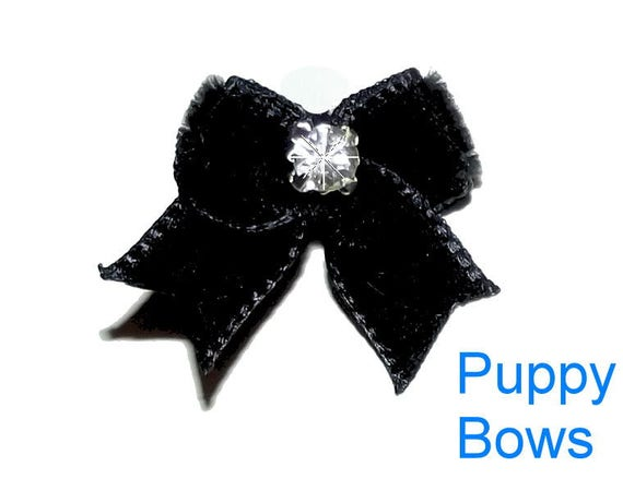 Puppy Bows ~ Wee Tiny black velvet dog show bow pair Maltese double topknot hair
