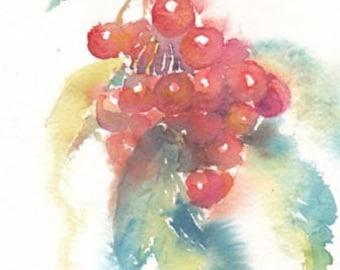 Mountain ash, rowan berry. Original watercolour.