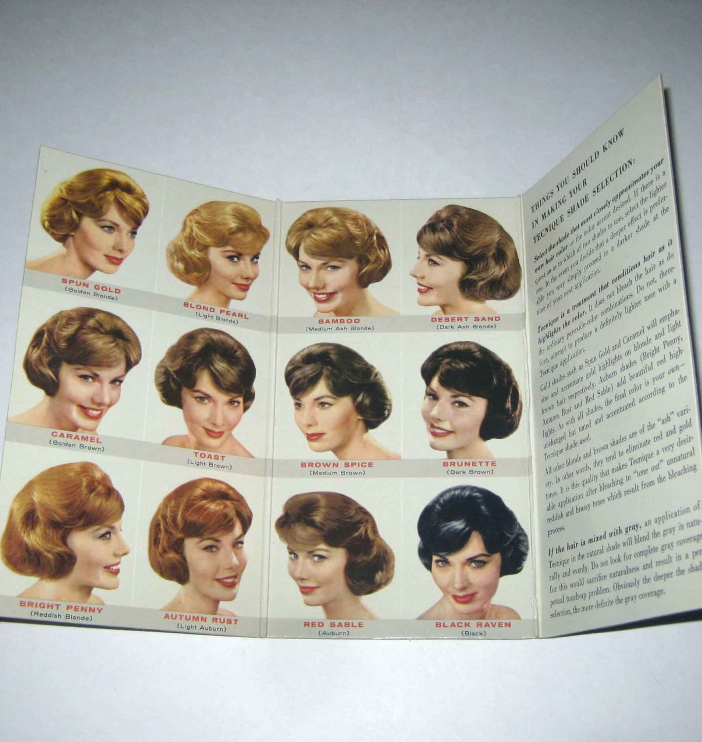Vintage Tecnique Hair Color Shade Selector Sample Book from Beauty ...