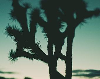 California desert art print, Joshua Tree photograph, abstract wall art, blue boho decor, southwest art, Coachella, desert photography sunset