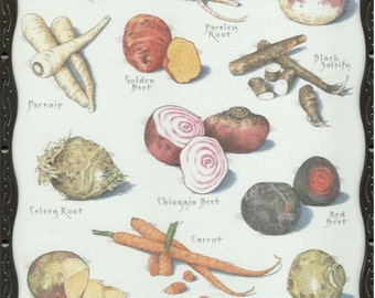 Framed Root Vegetables Color Print by Cook's Illustrated