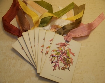 Autumn Red Oak Tags Thanksgiving Tags Vintage Style - Set of 9