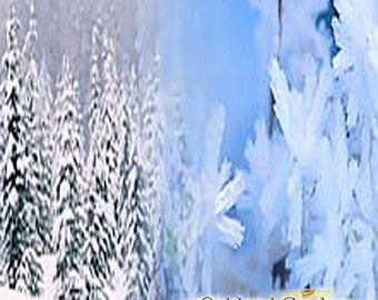 ALPINE FROST Fragrance Oil - Reminiscent of a walk in the frosted woods with fresh breezes and blend of Ylang Ylang on top of cypress trees