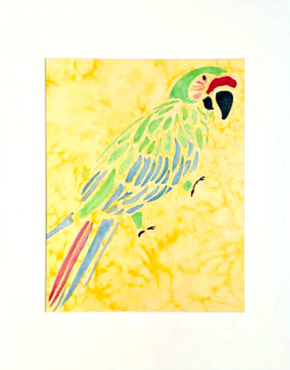 Macaw Watercolor Original 11x14 Matted Ready To Frame