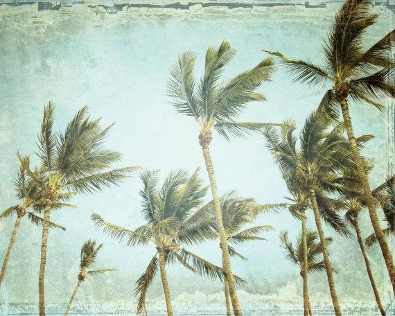 Tropical Wall Art Palm Tree Print Pale Aqua Green Decor Maui