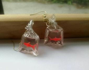 Carnival gold fish earrings!